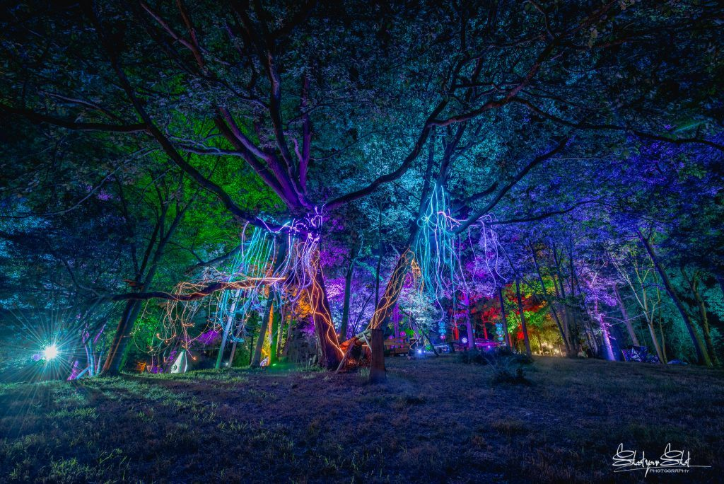 Noisily Festival 2018 - Electric Mode Review